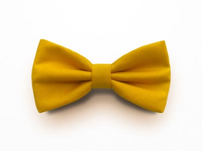 blog-matrimonio_Papillon-Cotton-Mountains_Giallo